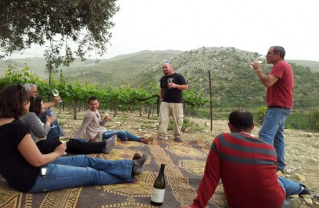 Wine & history